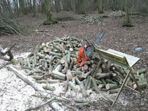 Small-scale equipment for processing small-diameter logs